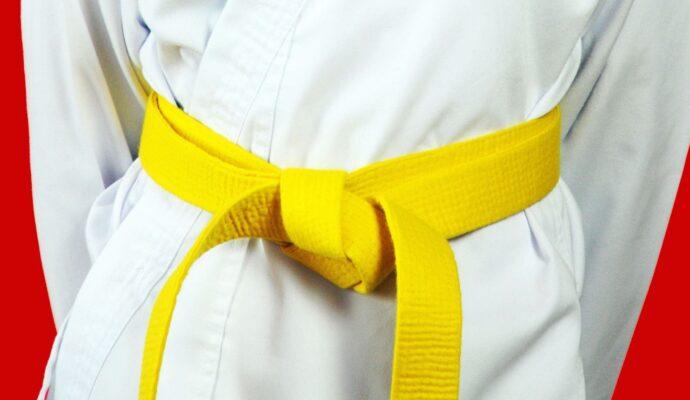 LSS Florida-Lean Six Sigma Yellow Belt